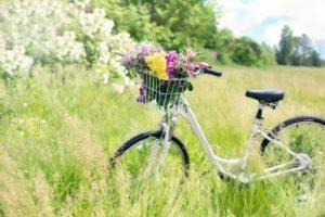jaro, detoxikace, očista, čistota, omlazení, krása, energie